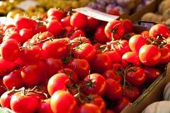 Tomates del mercado fresco Fotos de archivo libres de regalías