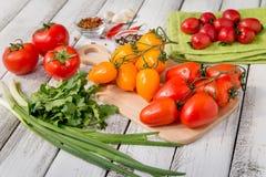 Tomates deliciosos vermelhos e amarelos Fotos de Stock Royalty Free