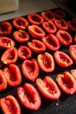 Tomates divisées en deux et salées Photographie stock libre de droits