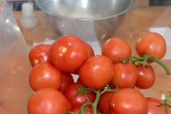 Tomates do grupo Imagem de Stock