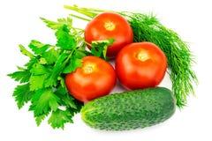 Tomates dos vegetais, pepino, salsa, aneto isolado no fundo branco Fotos de Stock
