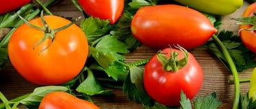 Tomates e aipo no fundo de madeira Foto de Stock Royalty Free