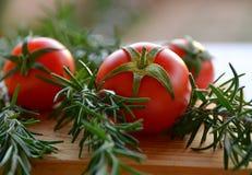 Tomates e alecrins fotos de stock