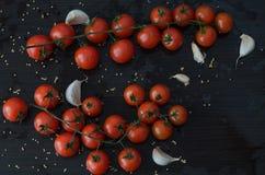 Tomates e alho no fundo preto Imagem de Stock Royalty Free