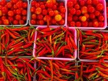 Tomates e chilis vermelhos orgânicos imagem de stock royalty free
