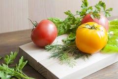 Tomates e ervas Foto de Stock