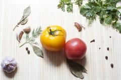 Tomates e ervas Fotos de Stock Royalty Free