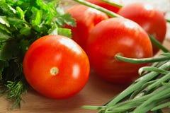Tomates e ervas frescas Imagens de Stock