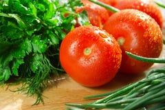 Tomates e ervas frescas Imagem de Stock