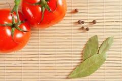 Tomates e folha de louro Imagens de Stock