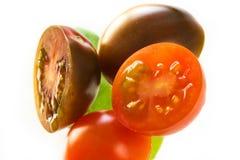 Tomates e folhas da manjericão isoladas no branco Fotografia de Stock
