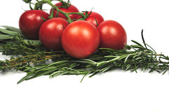 Tomates e hierbas italianas fotografía de archivo