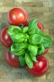 Tomates e manjericão Imagens de Stock