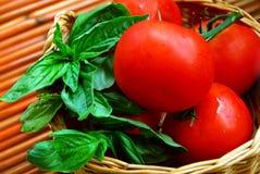 Tomates e manjericão Imagem de Stock Royalty Free