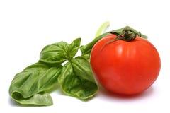 Tomates e manjericão Fotografia de Stock Royalty Free
