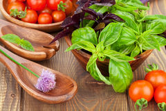 Tomates e manjericão frescos dos fazendeiros Imagem de Stock