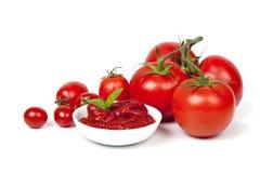 Tomates e pasta de tomate Foto de Stock Royalty Free