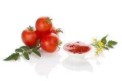 Tomates e pasta de tomate Fotografia de Stock