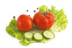 tomates e pepino vermelhos no fundo branco Os legumes frescos em um fundo branco Fotografia de Stock Royalty Free