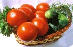 Tomates e pepinos imagens de stock