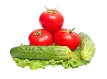 Tomates e pepinos na alface Imagem de Stock