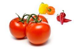 Tomates e pimentas Fotografia de Stock