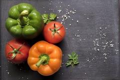 Tomates e pimentas Imagens de Stock Royalty Free
