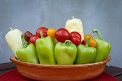 Tomates e pimentas de cereja na bacia Vegetais sazonais frescos c Fotos de Stock