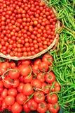 Tomates e pimentas de sino verdes Fotos de Stock