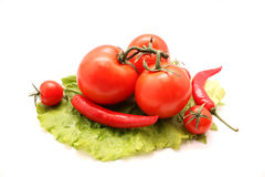Tomates e pimentas na folha da alface Imagens de Stock
