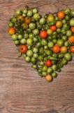 Tomates e pimentas verdes e maduros Imagem de Stock Royalty Free