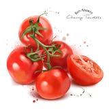 Tomates e pulverizador vermelhos de cereja Foto de Stock