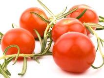 Tomates e rosemary de cereja Fotografia de Stock