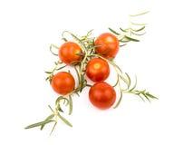 Tomates e rosemary de cereja Fotografia de Stock Royalty Free