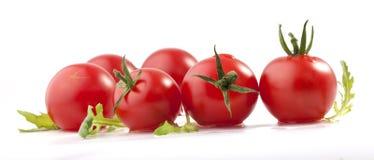 Tomates e ruccola (arugula) imagem de stock royalty free