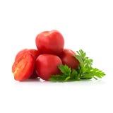 Tomates e salsa frescos Foto de Stock
