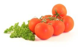Tomates e uma salsa Fotos de Stock Royalty Free