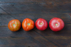 Tomates em um fundo de madeira Fotos de Stock Royalty Free