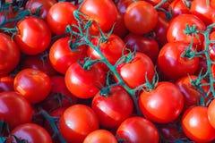 Tomates em um mercado Fotos de Stock