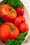 Tomates em uma bacia de madeira Foto de Stock Royalty Free