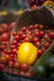 Tomates em uma cesta Imagem de Stock