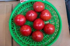 Tomates em uma cesta verde Foto de Stock