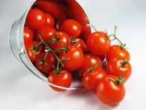 Tomates em uma cubeta Imagem de Stock