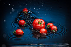 Tomates en agua Imagen de archivo