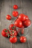 Tomates en cubo Fotografía de archivo