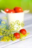 Tomates en dille Stock Foto