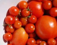 Tomates en el cuenco blanco Foto de archivo libre de regalías