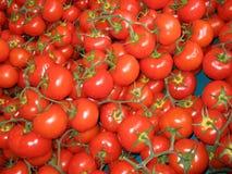 Tomates en el mercado de los granjeros Imágenes de archivo libres de regalías