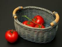 Tomates en la cesta Imagen de archivo libre de regalías