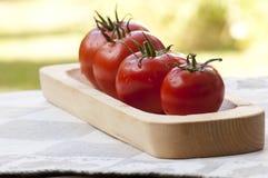 Tomates en la placa de madera Imágenes de archivo libres de regalías